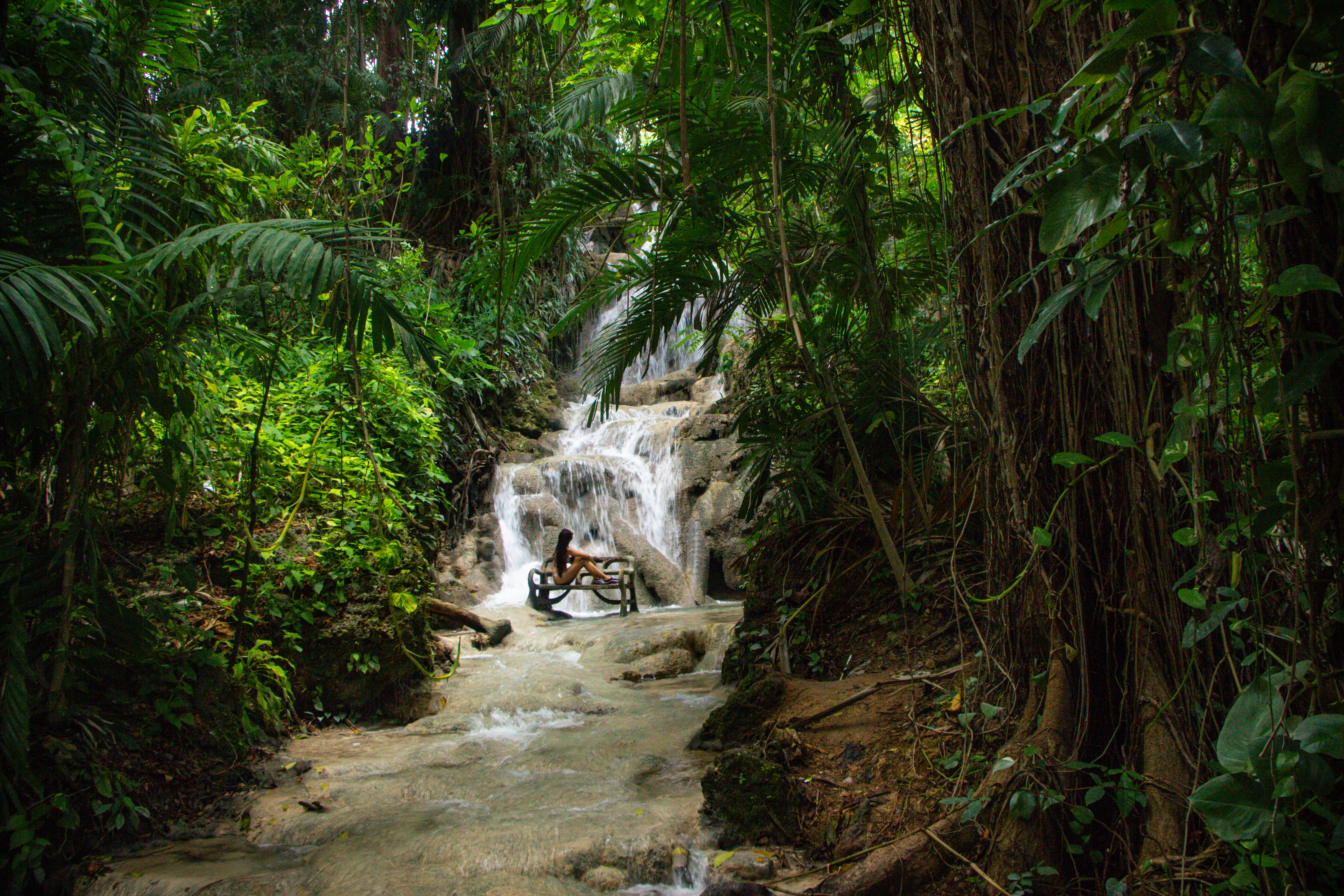 The Turtle River Falls & Garden