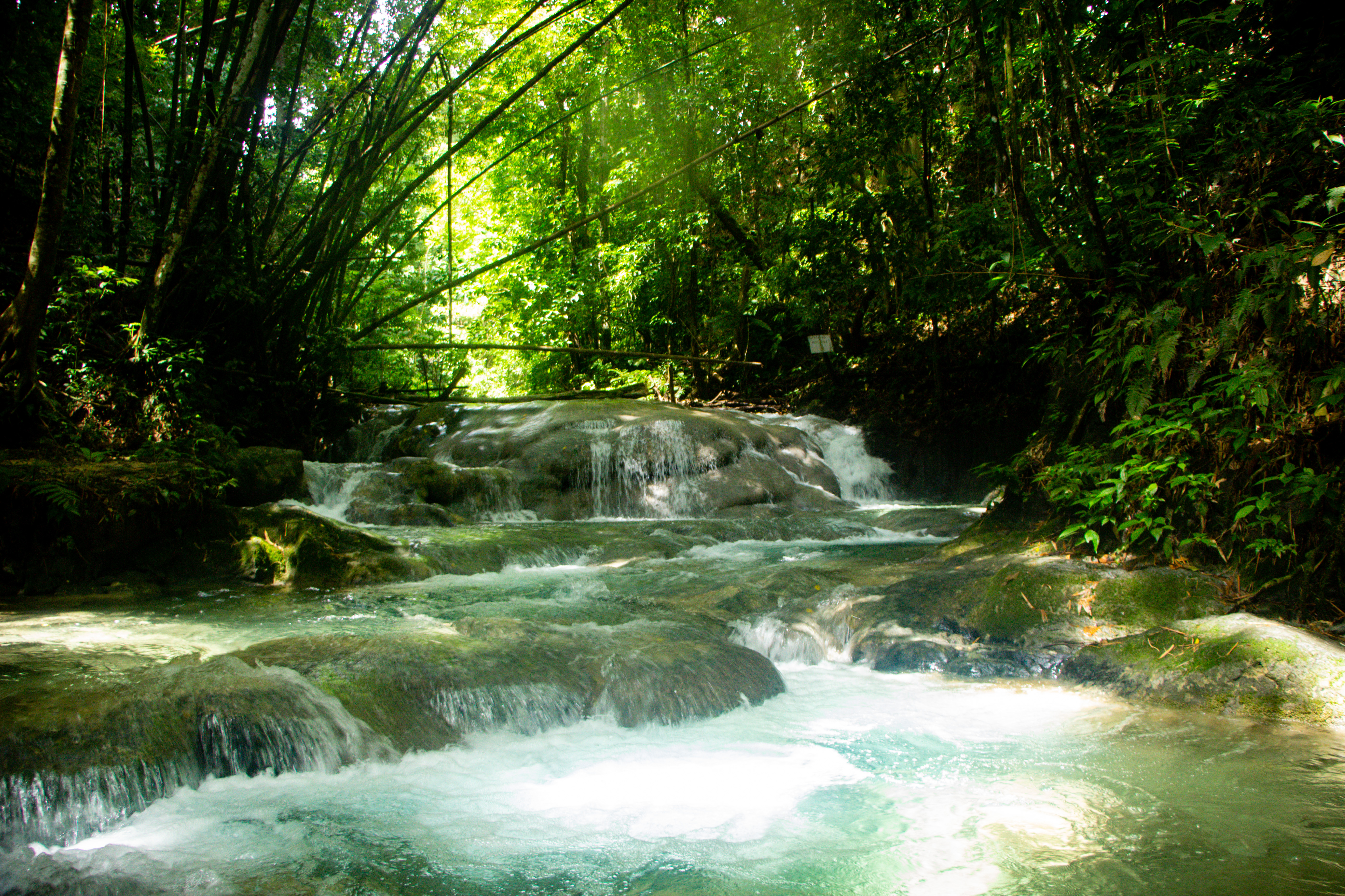 NEGRIL: Mayfield Falls