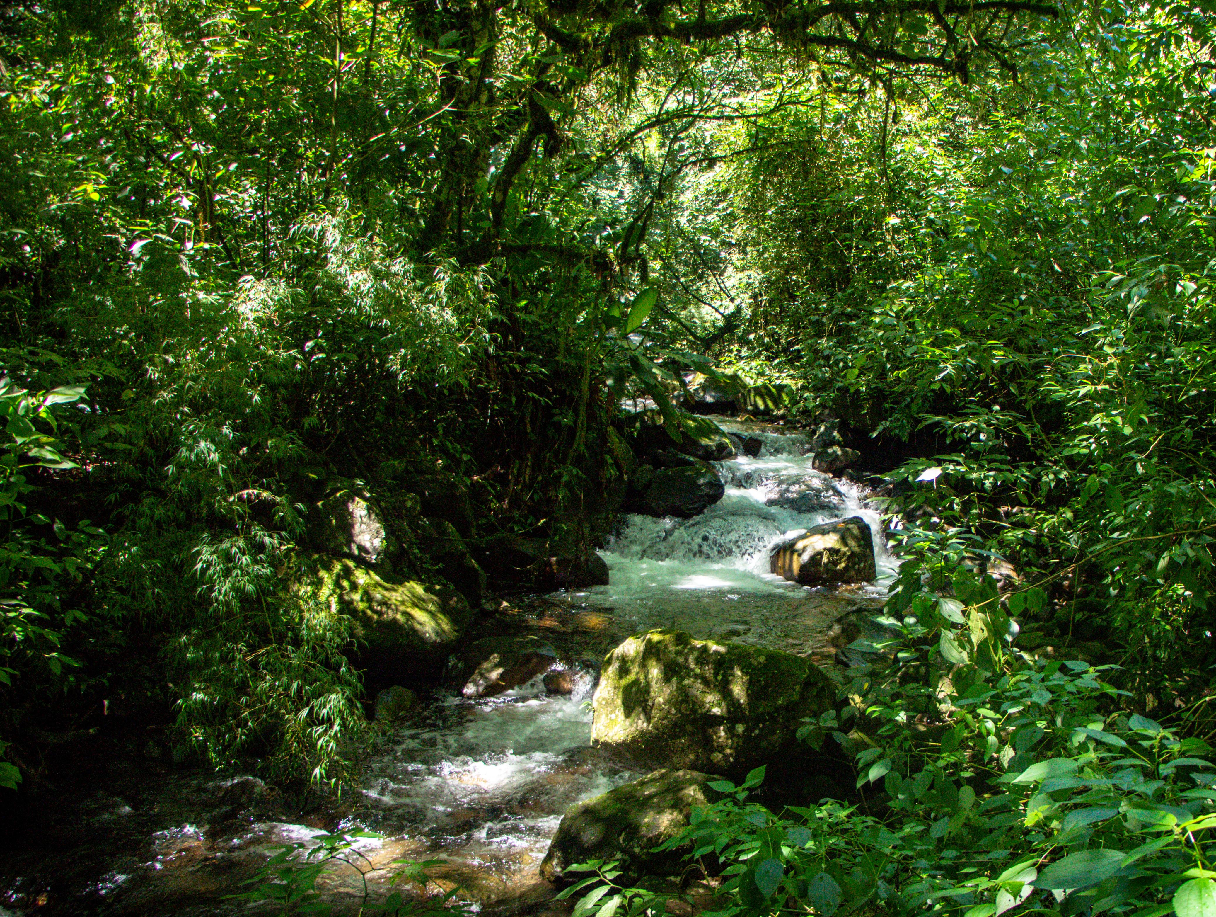 CACHOEIRA DO BORGES Piscina Natural de Baixo Mampituba