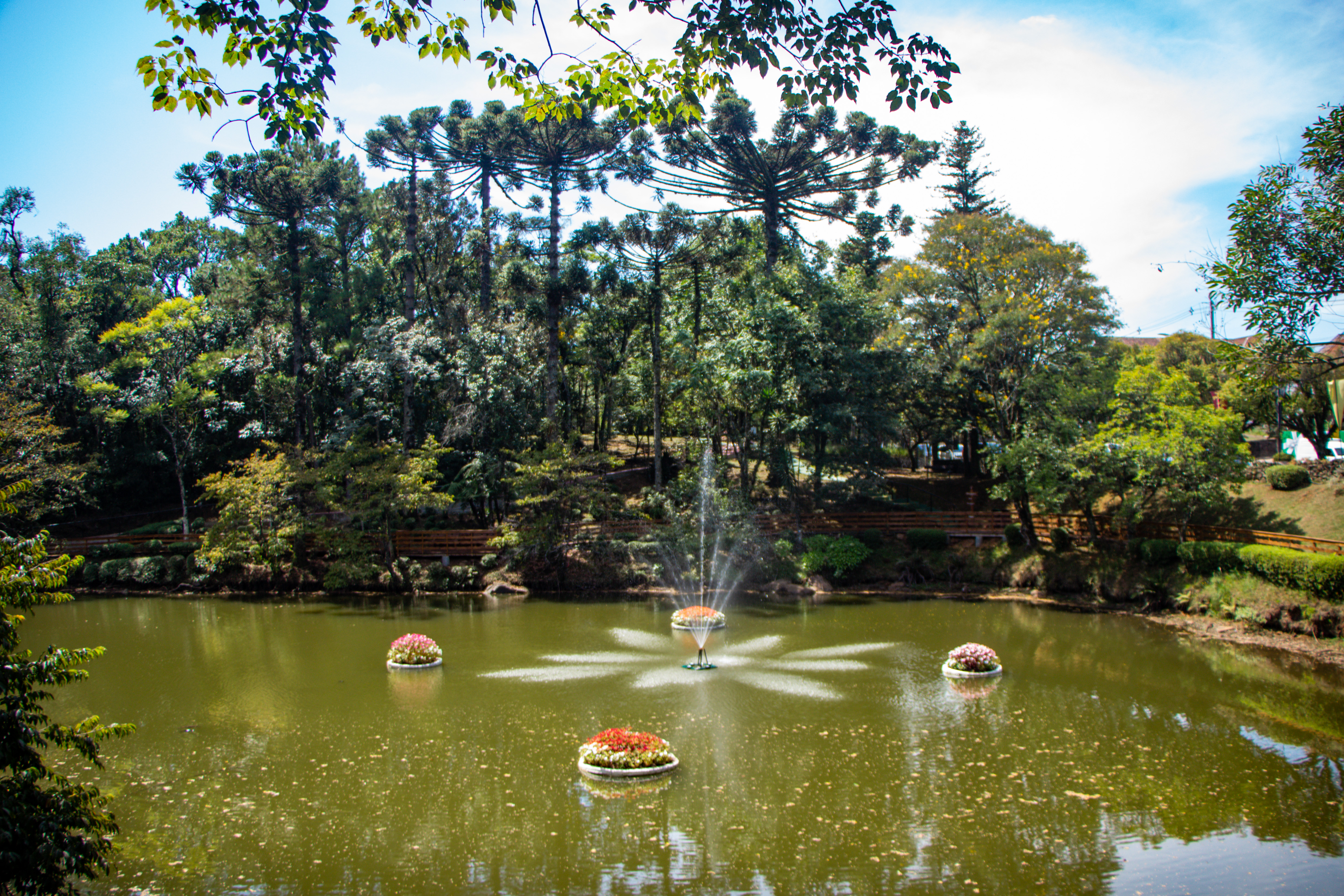 Nova petrópolis parque aldeia do imigrante Lago dos Canteiros Flutuantes