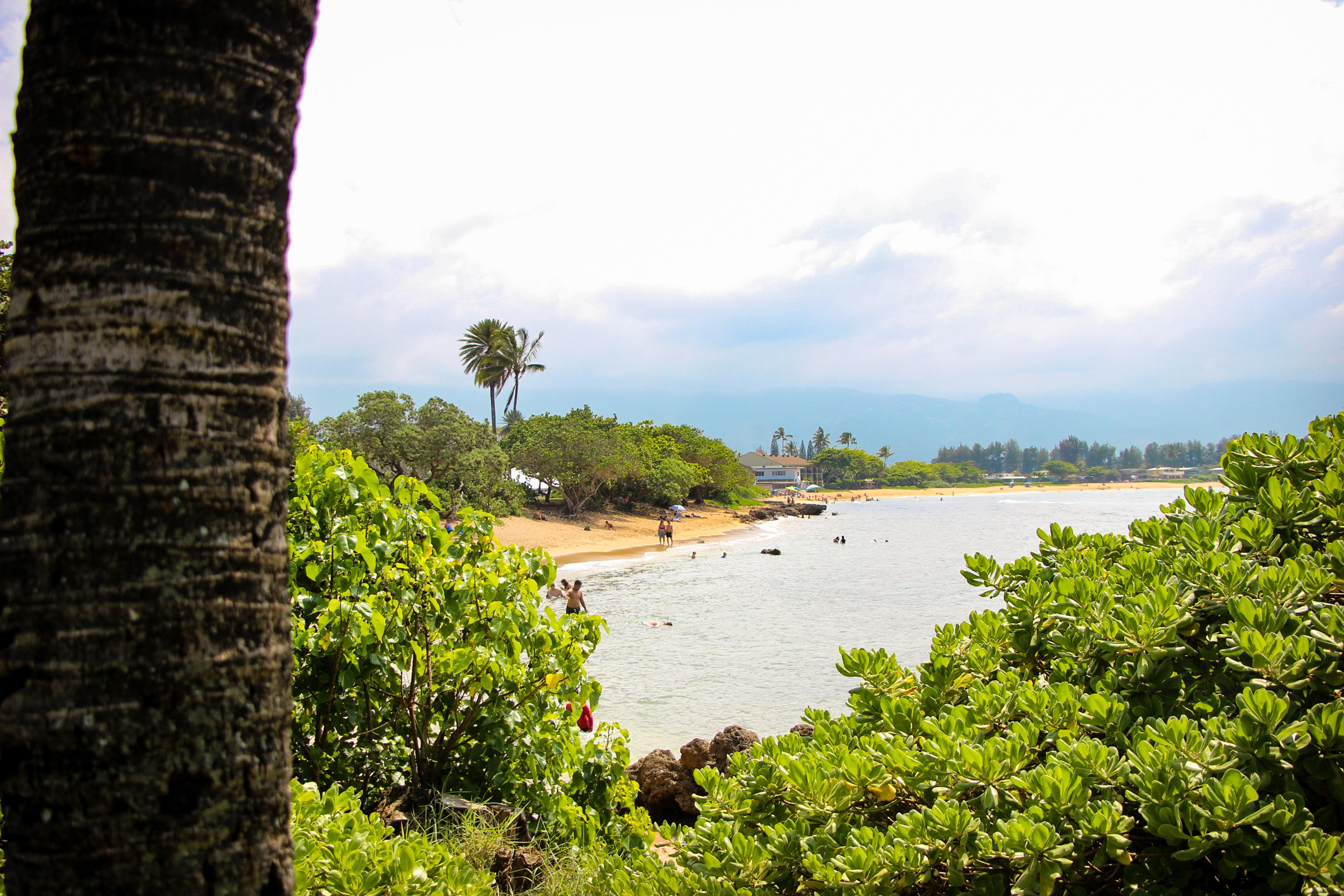 Haleiwa Ali'i Beach Park