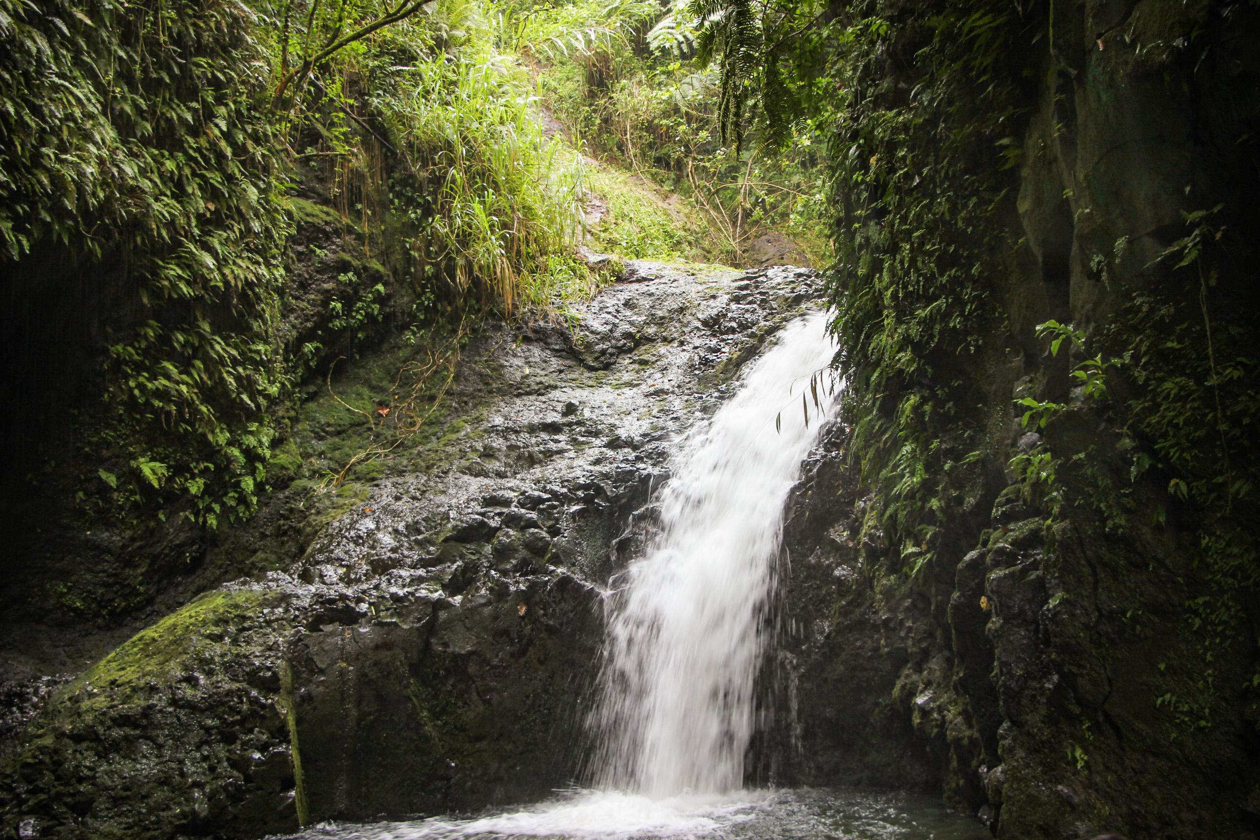 TRILHAS EM OAHU, Maunawili Falls Trail