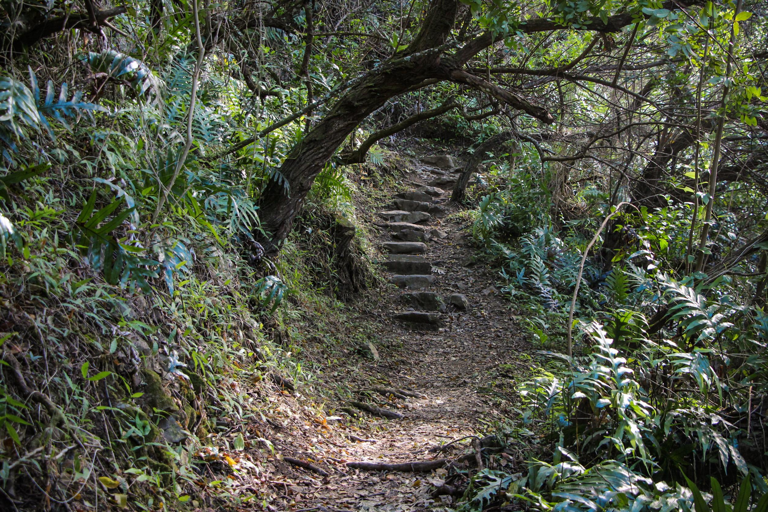 TRILHAS EM OAHU, Friendship Gardens Trail